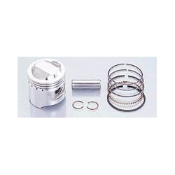 piston kit 48mm 6v