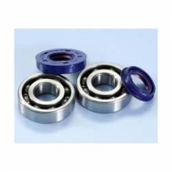 Bearing and oil seals racing for crankshaft Polini for Minarelli scooter