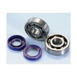 bearing and seals for Suzuki RMX / SMX crankshaft