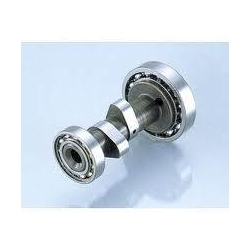 Camshaft bearing type (12V) power race edition for genuine head