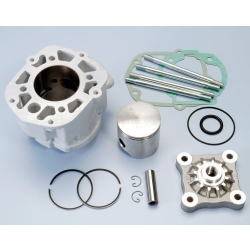 Cilinder kit Polini 50cc Derbi euro 3 alu cast nickasil