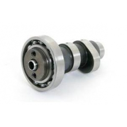 Takegawa camshaft for SuperHead + R 2V