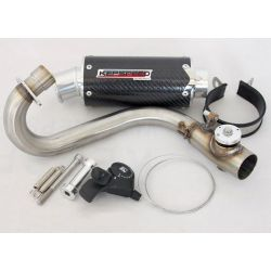 Exhaust Kepspeed Monkey GP2 sound adjust carbon