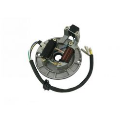 Stator ignition for Lifan 2 coils models