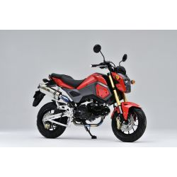 Exhaust Over TT Formula RS Honda MSX125 Grom 2016+