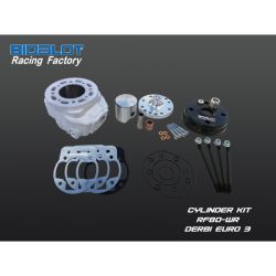 Racing Factory kit 80cc -WR DERBI EURO 3