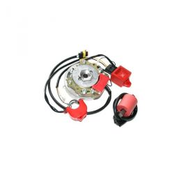 Allumage rotor interne HPI 2 courbes pour Puch Maxi , Puch Macho , Kreidler KS50 , Tomos A35