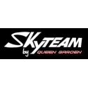 Skyteam and replica